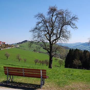 Fantastisk utsikt over Mostviertel fra Windhag, Niederösterreich, Østerrike.