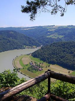 Utsikt over Donau og «Schlögener Schlinge» fra Steiner Felsen, Oberösterreich, Østerrike.