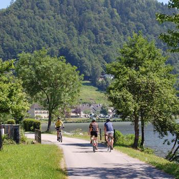Syklister langsmed Donau, Oberösterreich, Østerrike.