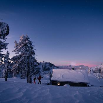 På ski i solnedgang i Nature park Dobratsch, Kärnten, Østerrike.