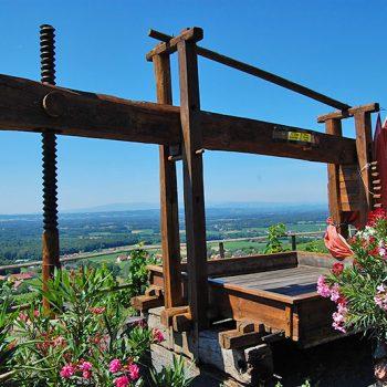 vinregionen Klöchberg, Steiermark, Østerrike