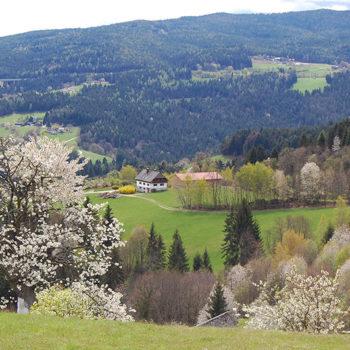 Ligist Panoramavei, Steiermark, Østerrike