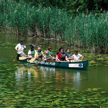 Kanotur i Donau-Auen nasjonalpark, Østerrike