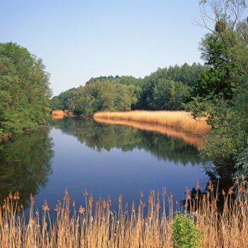 Nasjonalpark Donau-Auen, Østerrike