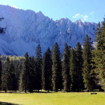 Bodental, Märchenwiese, Sør-Kärnten, Østerrike