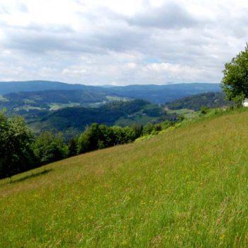 Bad Schwanberg, Steiermark, Østerrike
