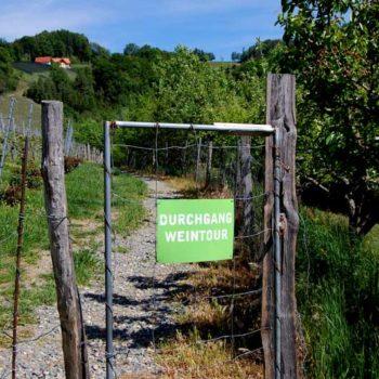 En port inn til en vingård i Steiermark, Østerrike