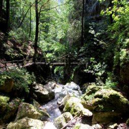 Juvvandringer i Steiermark, Østerrike