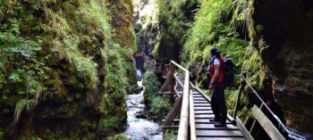 Juvvandringer i Østerrike - Raggaschlucht, Kärnten