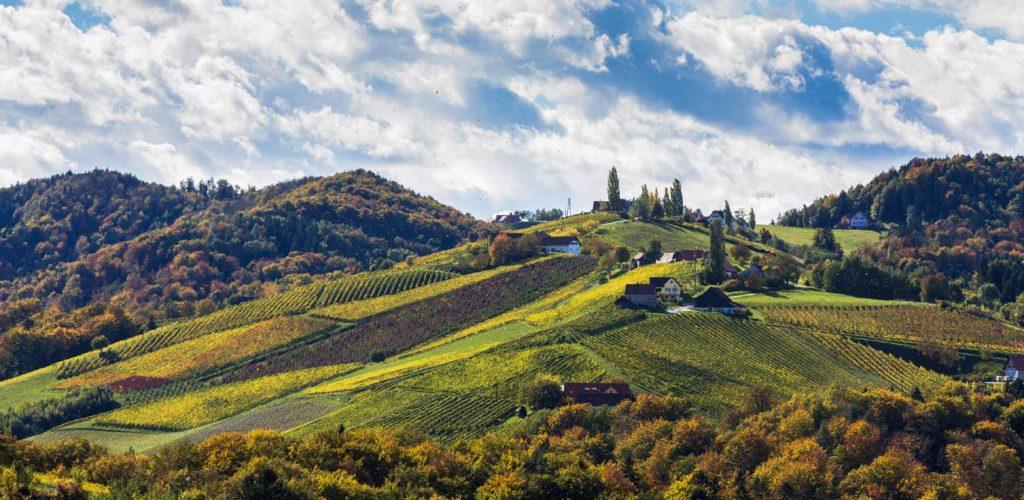 Vindistrikt i det sørlige Steiermark, Østerrike. Foto: Steiermark Tourismus / Harry Schiffer ©
